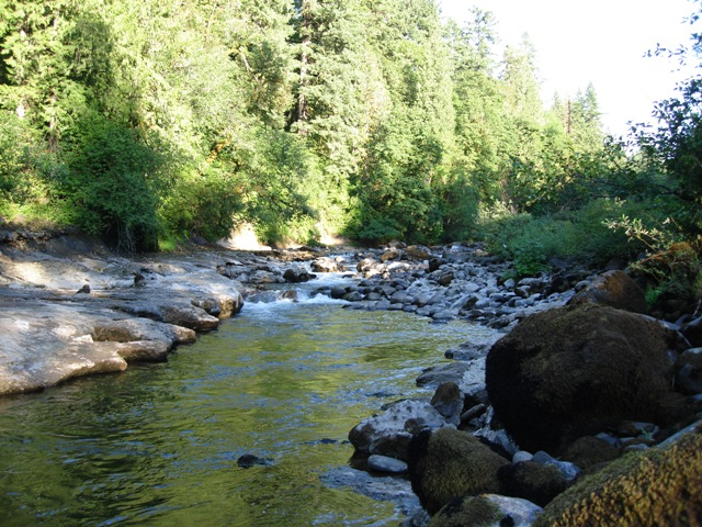 Bull Run River, July 2010