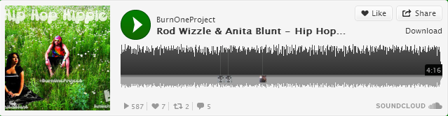 Hip Hop Hippie by Burn One Project and Anita Blunt.